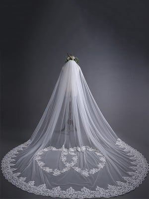 Beautiful Tulle With Lace Long Wedding Veils