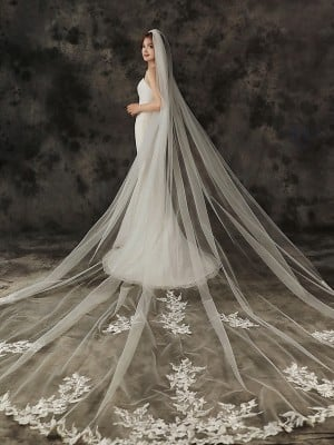 Gorgeous Tulle One-Tier Cathedral Bridal Veils With Applique