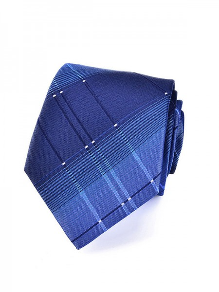 Formal Polyester Tie