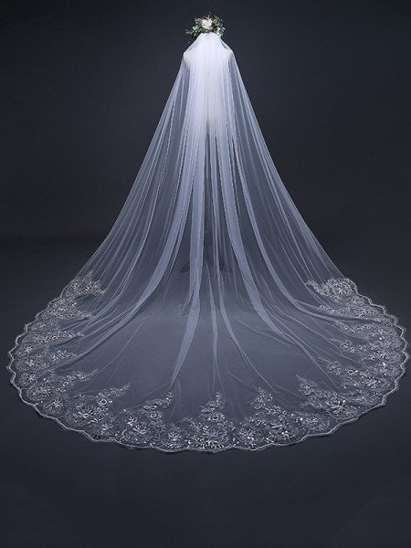 Elegant Tulle With Lace Long Wedding Veils