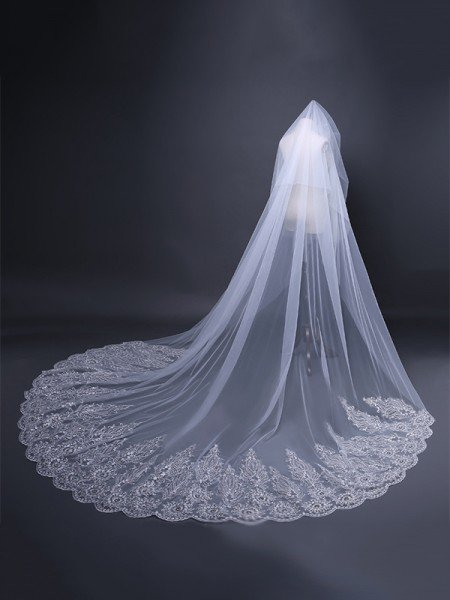 Graceful Tulle With Lace Long Wedding Veils