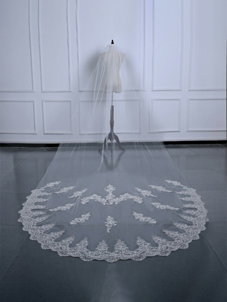 Gorgeous Tulle With Applique Wedding Veils