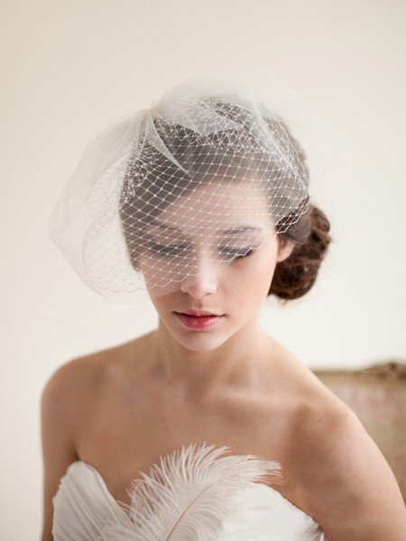 Awesome One-tier Birdcage Veils