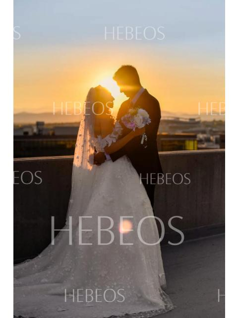 Hebeos Style Gallery